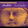 Couverture de l'album Shakti: Tantric Embrace