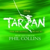 Couverture de l'album Tarzan - The Broadway Musical (Sountrack from the Musical & Cast Recording)