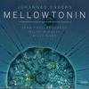 Couverture de l'album Mellowtonin (with Billy Hart, Jean Paul Brodbeck & Milan Nikolic)