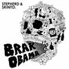 Couverture de l'album Brak Obama - Single