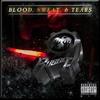 Couverture de l'album Blood, Sweat, & Tears