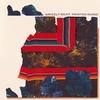 Couverture de l'album Painted Ruins