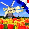 Cover of the album De beste hits van Anneke Drent