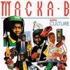 Couverture de l'album Buppie Culture