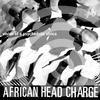 Couverture de l'album Vision of a Psychedelic Africa