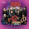 Couverture de l'album Chicos de Barrio: 12 Grandes Exitos, Vol. 2