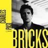 Couverture de l'album Bricks
