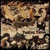 Couverture de l'album Twelve Tales