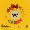 Couverture de l'album Life of a Wallflower Vol. 1
