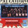 Couverture de l'album Trip to Mamboland