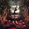 Cover of the album Putrescent Infectious Rabidity