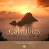Cover of the album Calm Ibiza (Winter Edition 2011) [Pure Ibiza Chillout]