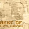 Couverture de l'album Best Of Linval Thompson
