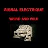 Couverture de l'album Weird and Wild - Single