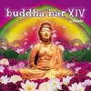 Cover of the album Buddha Bar XIV (Selected By DJ Ravin)