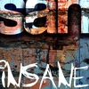 Couverture de l'album Insane