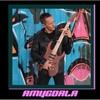 Cover of the album Amygdala