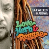 Couverture de l'album Love Herb & Reggae