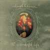 Couverture de l'album It's a Wonderful Life