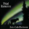 Couverture de l'album Into Cold Darkness