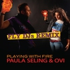 Couverture de l'album Playing With Fire (Fly DJs Remix) - Single