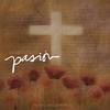 Couverture de l'album Pasión