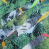 Couverture de l'album Kitsuné: Buscabulla - EP