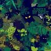 Couverture de l'album Jungle by Night