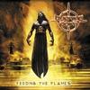Couverture de l'album Feeding the Flames