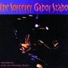 Couverture de l'album The Sorcerer