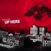 Couverture de l'album Up Here