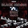 Couverture de l'album Diggin' in Dah Vaults