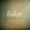 Couverture de l'album Elevator Dubs