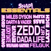 Couverture de l'album Snap Essentials