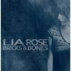 Couverture de l'album Bricks & Bones