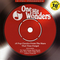 Couverture du titre One Hit Wonders - 18 Pop Classics from the Stars That Time Forgot (Rerecorded Version)