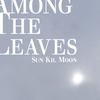 Couverture de l'album Among the Leaves