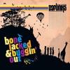 Couverture de l'album Bone Jacked & Buggin Out