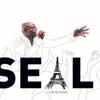 Couverture du titre Live in Paris