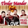 Cover of the album I Love Volksmusik
