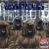 Couverture de l'album Enchanting Bass