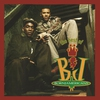 Couverture de l'album The Best of Born Jamericans