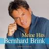 Couverture de l'album Meine Hits