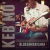 Couverture de l'album Bluesamericana