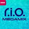 Couverture de l'album Megamix - Single