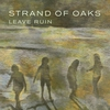 Cover of the album Leave Ruin