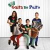 Couverture de l'album Gaita No Peito