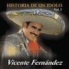 Couverture de l'album La Historia de un Idolo