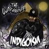 Couverture de l'album Indigoism