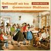 Cover of the album Volksmusik mit den Hammerauer Musikanten - Instrumental